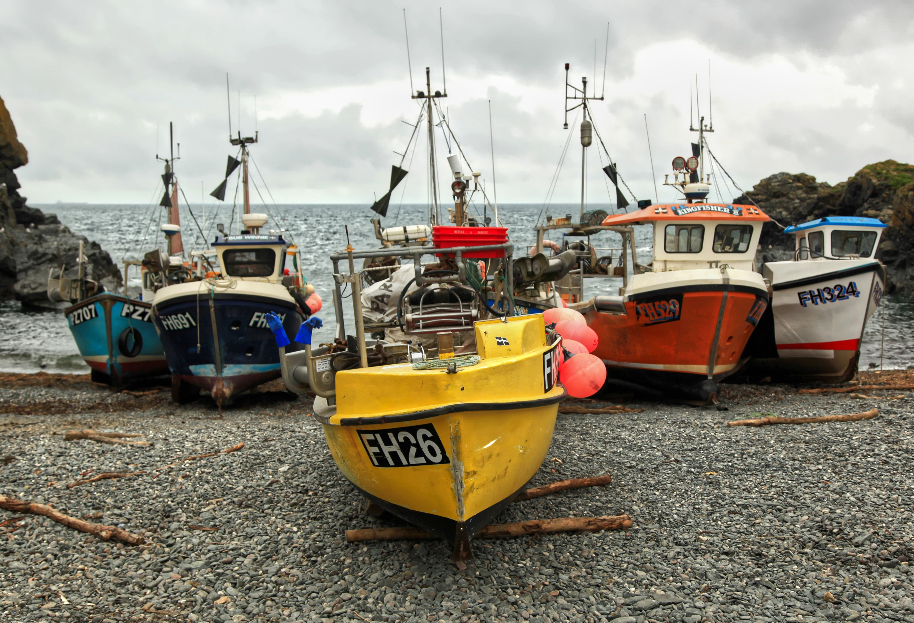 Cadgwith Fishing Cove Trust - Charity Auction