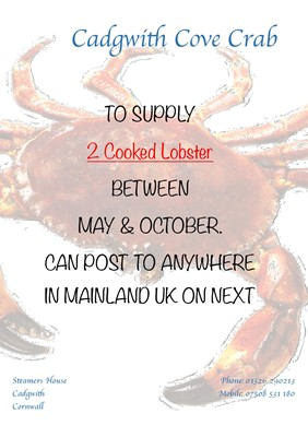 Lot 95 - Two cooked lobsters
