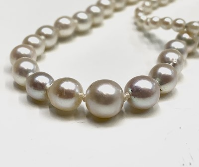 Lot 92 - A pearl necklace 20gm