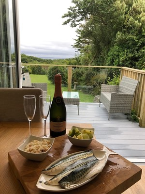 Lot 91 - A one week Stay at Driftwood, Cadgwith This...