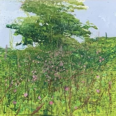 Lot 51 - Paul LEWIN (1967) Summer Hawthorn, Higher Trye...