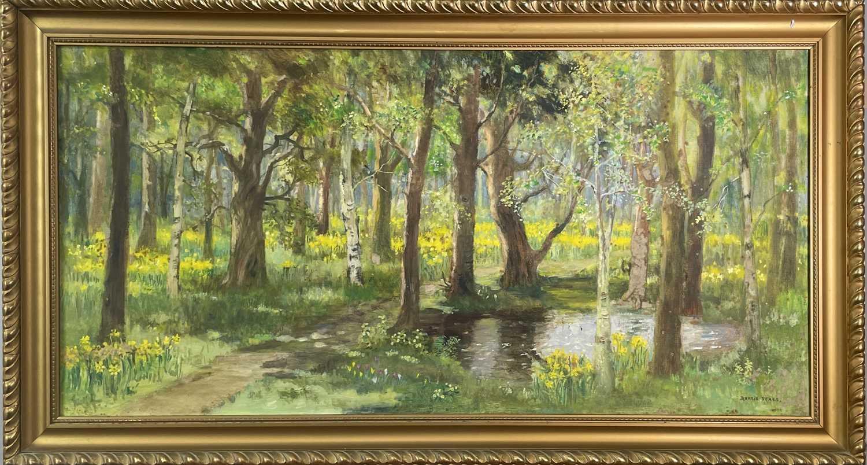Lot 342 - Dorcie SYKES (1908-1998) Woodland Scene Oil on...