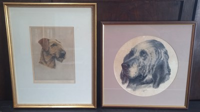 Lot 13 - Alice G.C. BARNWELL (XX), Airdale Terrier,...