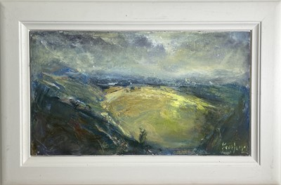 Lot 5 - Steve SLIMM (1953) These Rounded Hills Oil on...